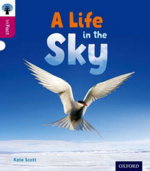 Oxford Reading Tree inFact: Level 10: A Life in the Sky av Kate Scott (Heftet)