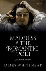 Omslag - Madness and the Romantic Poet