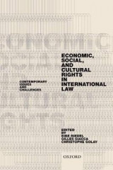 Omslag - Economic, Social, and Cultural Rights in International Law