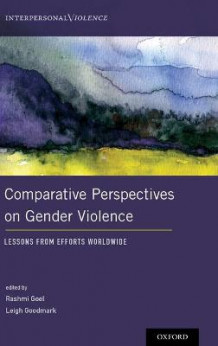 Comparative Perspectives on Gender Violence (Innbundet)