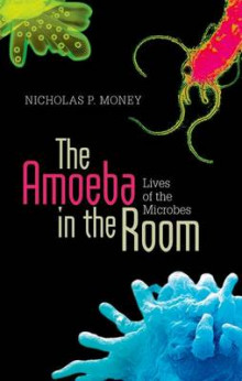 The Amoeba in the Room av Nicholas P. Money (Innbundet)