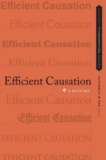 Efficient Causation (Innbundet)