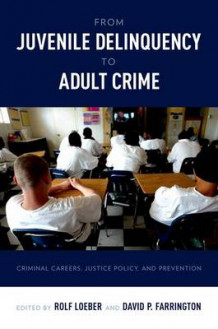 From Juvenile Delinquency to Adult Crime (Heftet)