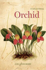 Omslag - Orchid