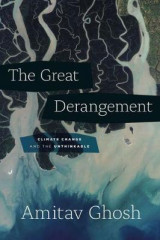 Omslag - The Great Derangement