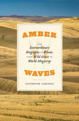 Omslag - Amber Waves - The Extraordinary Biography of Wheat, from Wild Grass to World Megacrop