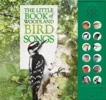 The Little Book of Woodland Bird Songs av Andrea Pinnington og Caz Buckingham (Innbundet)