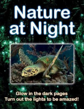 Nature at Night av Lisa Regan (Heftet)
