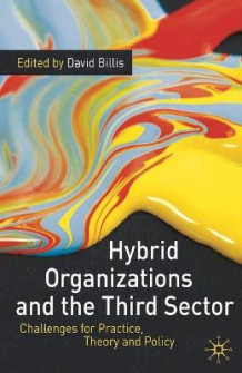 Hybrid Organizations and the Third Sector av David Billis (Innbundet)