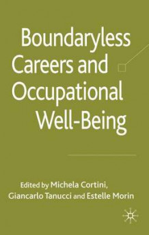 Boundaryless Careers and Occupational Wellbeing (Innbundet)