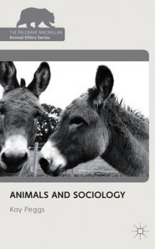 Animals and Sociology av Kay Peggs (Heftet)