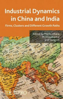 Industrial Dynamics in China and India (Innbundet)