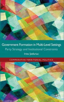 Government Formation in Multi-Level Settings av Irina Stefuriuc (Innbundet)