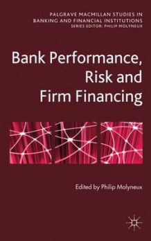 Bank Performance, Risk and Firm Financing (Innbundet)