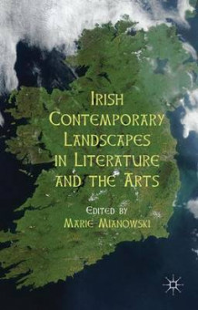 Irish Contemporary Landscapes in Literature and the Arts (Innbundet)