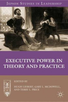 Executive Power in Theory and Practice (Innbundet)