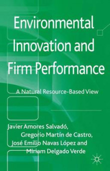 Environmental Innovation and Firm Performance av Javier Amores Salvado, Gregorio Martin de Castro, Jose Emilio Navas Lopez og Miriam Delgado Verde (Innbundet)