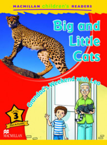 Macmillan Children's Readers Big and Little Cats Level 3 av Coleen Degnan-Veness (Heftet)