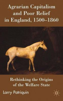Agrarian Capitalism and Poor Relief in England, 1500-1860 av Larry Patriquin (Innbundet)