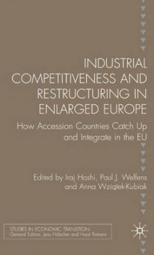 Industrial Competitiveness and Restructuring in Enlarged Europe av Paul J. J. Welfens og Anna Wziatek-Kubiak (Innbundet)