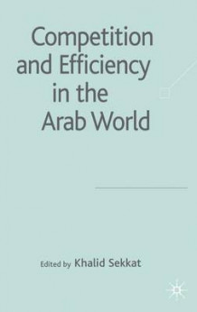 Competition and Efficiency in the Arab World (Innbundet)