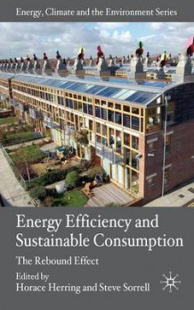 Energy Efficiency and Sustainable Consumption (Innbundet)