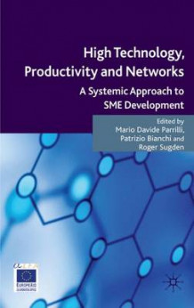 High Technology, Productivity and Networks (Innbundet)