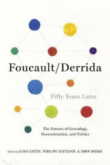 Omslag - Foucault/Derrida Fifty Years Later