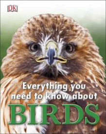 Everything You Need to Know About Birds av DK (Innbundet)