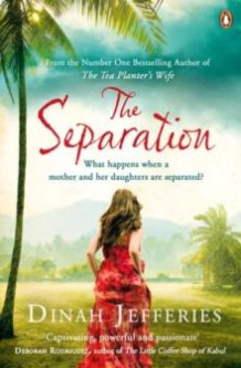 The separation av Dinah Jefferies (Heftet)