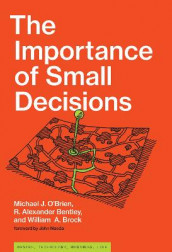 The Importance of Small Decisions av R. Alexander Bentley, William A. Brock og Michael J. O'Brien (Innbundet)