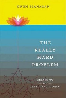 The Really Hard Problem av Owen J. Flanagan (Heftet)