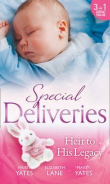 Special Deliveries: Heir To His Legacy av Maisey Yates og Elizabeth Lane (Heftet)