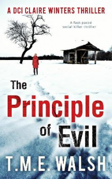 The Principle of Evil av T. M. E. Walsh (Heftet)