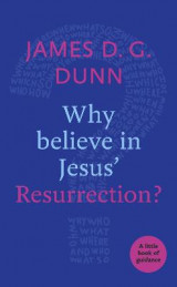 Omslag - Why Believe in Jesus' Resurrection?
