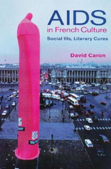 AIDS in French Culture av David Caron (Innbundet)