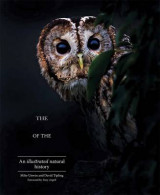 Omslag - The Enigma of the Owl