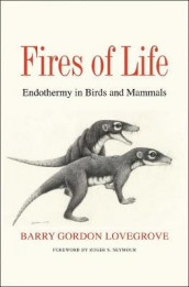 Fires of Life av Barry Gordon Lovegrove (Innbundet)
