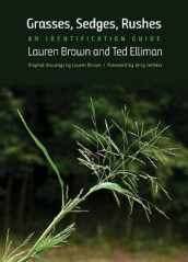 Grasses, Sedges, Rushes av Lauren Brown og Ted Elliman (Heftet)