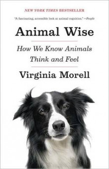 Animal Wise av Virginia Morell (Heftet)