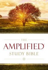 Omslag - Amplified Study Bible