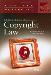 Principles of Copyright Law av Roger Schechter og John Thomas (Heftet)