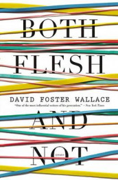 Both Flesh and Not av David Foster Wallace (Innbundet)