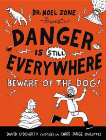 Danger Is Still Everywhere av David O'Doherty (Innbundet)