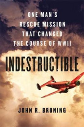 Indestructible av John R Bruning (Innbundet)