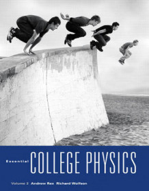 Essential College Physics: v. 2 av Andrew Rex og Richard Wolfson (Heftet)