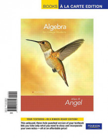 Algebra for College Students av Allen R Angel (Perm)
