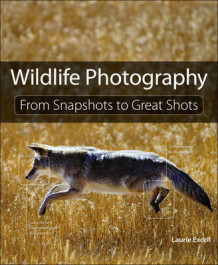 Wildlife Photography av Laurie S. Excell (Heftet)