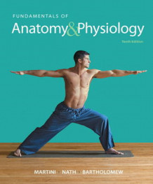 Fundamentals of Anatomy & Physiology Plus MasteringA&P with Etext -- Access Card Package av Frederic H. Martini, Judi L. Nath og Edwin F. Bartholomew (Blandet mediaprodukt)