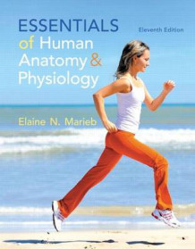 Essentials of Human Anatomy & Physiology Plus Masteringa&p with Etext -- Access Card Package av Elaine N Marieb (Blandet mediaprodukt)